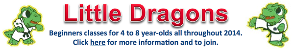 little dragons Jan 2014 banner ad